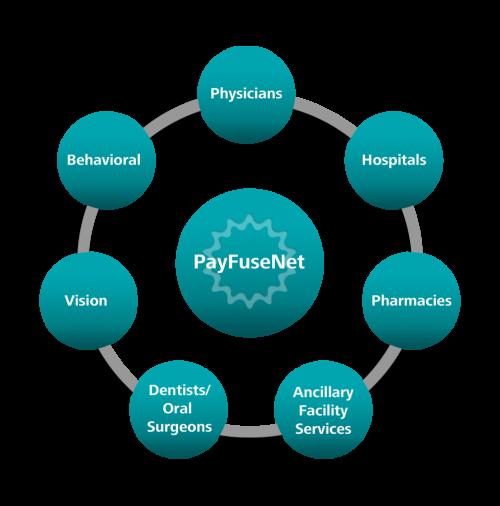 PayFuseNetwork model